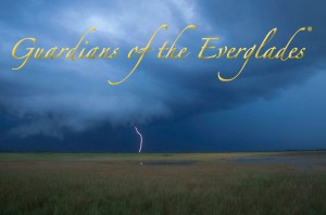 Guardians of the Everglades