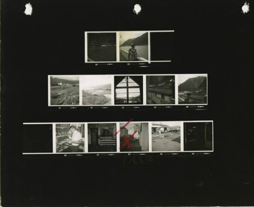 Contact Sheet by Sheila Turner-Seed