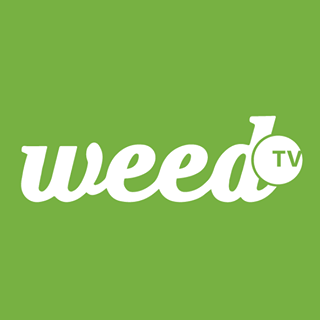 Player's Network Cannabis Media Grant